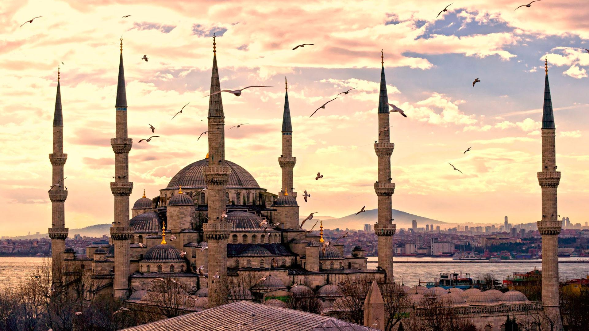 [2/2] Приключения моих 5 кг в Стамбуле